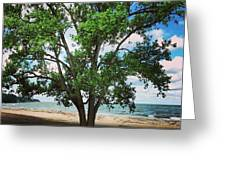 Edgewater Beach Greeting Card