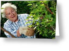 Elderly Lady Gardening Greeting Card