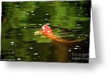 Emerald Waters Greeting Card