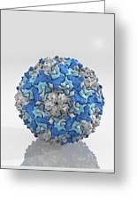 Enterovirus Particle Greeting Card
