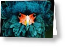 Exotic Birds Greeting Card