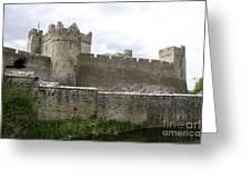 Exterior Of Cahir Castle Greeting Card