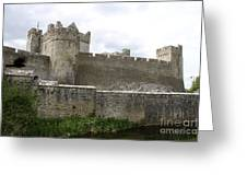Exterior Of Cahir Castle Greeting Card