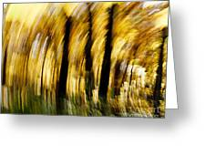Fall Abstract Greeting Card