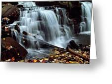 Fall At Ricketts Glen Greeting Card