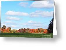 Fall Colors IIi Greeting Card