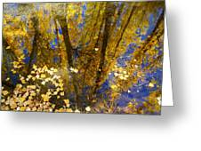 Fall Dreams Greeting Card
