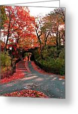 Fall Path Greeting Card