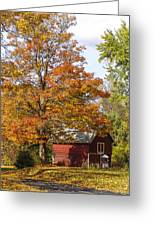 Fall View Greeting Card