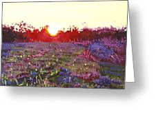 Farley Sunset Greeting Card