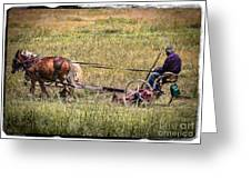 Farming With Horses Greeting Card