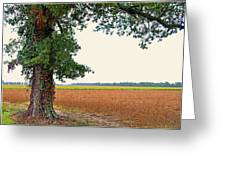Farmland View Greeting Card