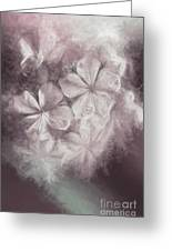 Fibonacci Flowers In Energy Manipulation Calculus Greeting Card