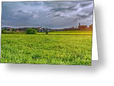 Fields Of Rapeseed In Lower Silesia Greeting Card
