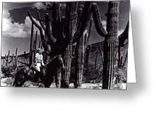 Film Homage Jean Harlow Bombshell 1933 Saguaro National Monument Tucson Arizona Duo-tone 2008 Greeting Card