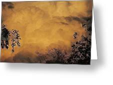 Film Noir Cornell Wilde Storm Fear 1956 Summer Storm Casa Grande Arizona 2004 Greeting Card