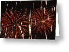 Fireworks At The Albuquerque Hot Air Greeting Card