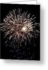 Fireworks Greeting Card by Mark Malitz