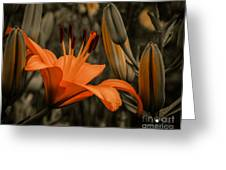 First To Bloom Greeting Card