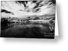 Flooded Grasslands And Mangrove Forest In The Florida Everglades Usa Greeting Card