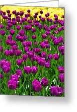 Floral Art Vi Greeting Card