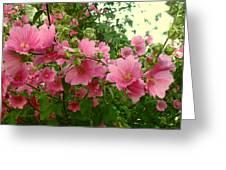 Floral Splash Greeting Card