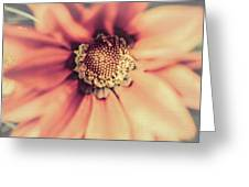 Flower Beauty II Greeting Card by Marco Oliveira