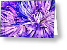 Flower Closeup Greeting Card