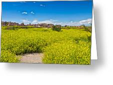 Flowers In The Badlands Greeting Card