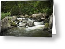 Flowing Stream In Vermont Greeting Card
