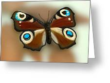 Fly Butterfly Greeting Card