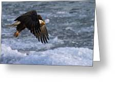 Flying Over Ice Greeting Card