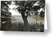 Fog On The Water Greeting Card