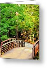 Folsom Bridge At Furnace Creek Greeting Card