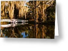 Footbridge Over Swamp, Magnolia Greeting Card