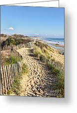 Footpath On The Atlantic Dune In Brittany Greeting Card