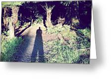 Forest Shadow Greeting Card
