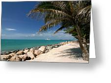 Fort Zachary Taylor Beach Greeting Card by Amy Cicconi