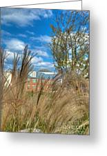 Founders Hall Through The Grasses Greeting Card
