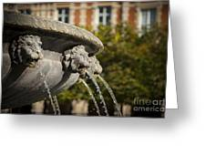 Fountain - Place Des Vosges Greeting Card