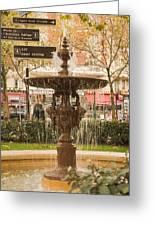 Fountain Greeting Card
