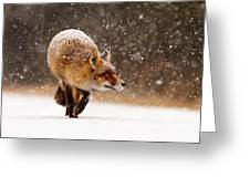 Fox First Snow Greeting Card by Roeselien Raimond