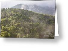 Franconia Notch State Park - White Mountains Nh Usa Greeting Card
