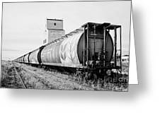 freight grain trucks on former canadian pacific railway now great sandhills railway through leader S Greeting Card