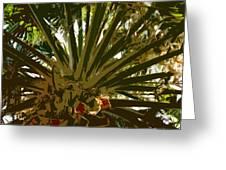 Fresh Cut Palm 2 Greeting Card