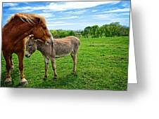 Friends On The Farm Greeting Card