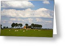 Friesland Greeting Card by Frits Selier