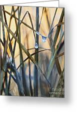Frozen Raindrops Impasto Greeting Card