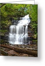 Ganoga Falls Greeting Card