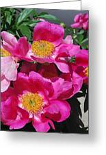 Garden Party Greeting Card by Billie Colson